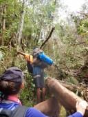 Day 2 Jungle Trekking