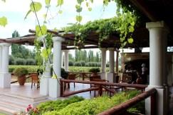 Nieto Senetiner Winery