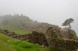 Fog-Covered Machu Picchu in Early AM