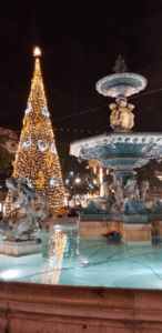 decorated Christmas tree and Fountain