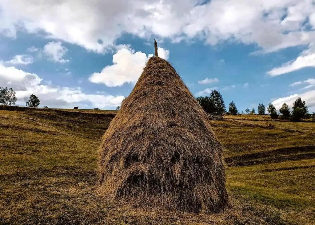 Typical haystack in Transylvania