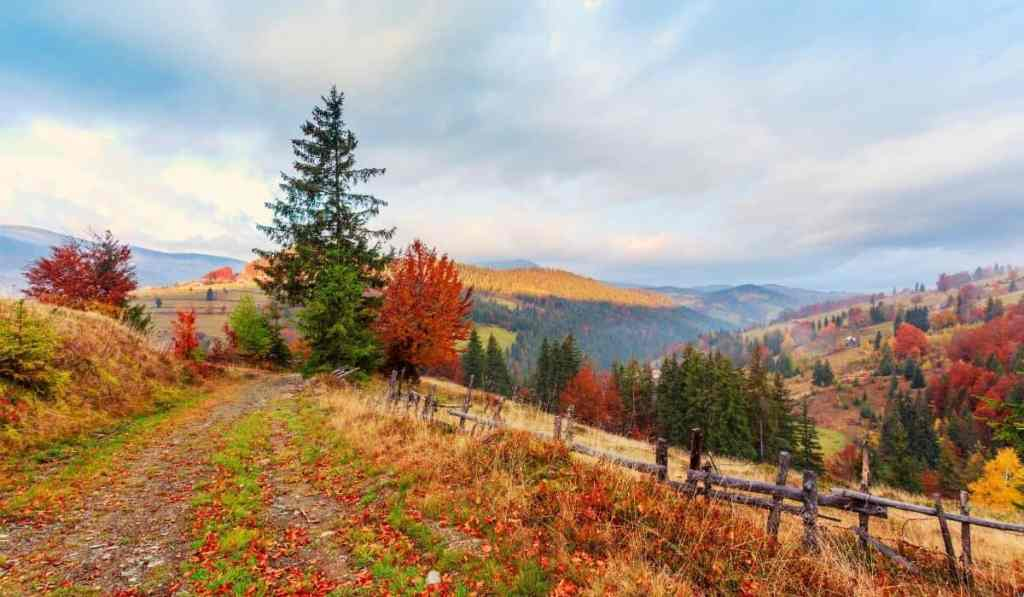 Transylvania landscape in autumn with colorful trees, rolling hills, and a few evergreens.