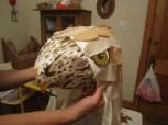 hawk-head