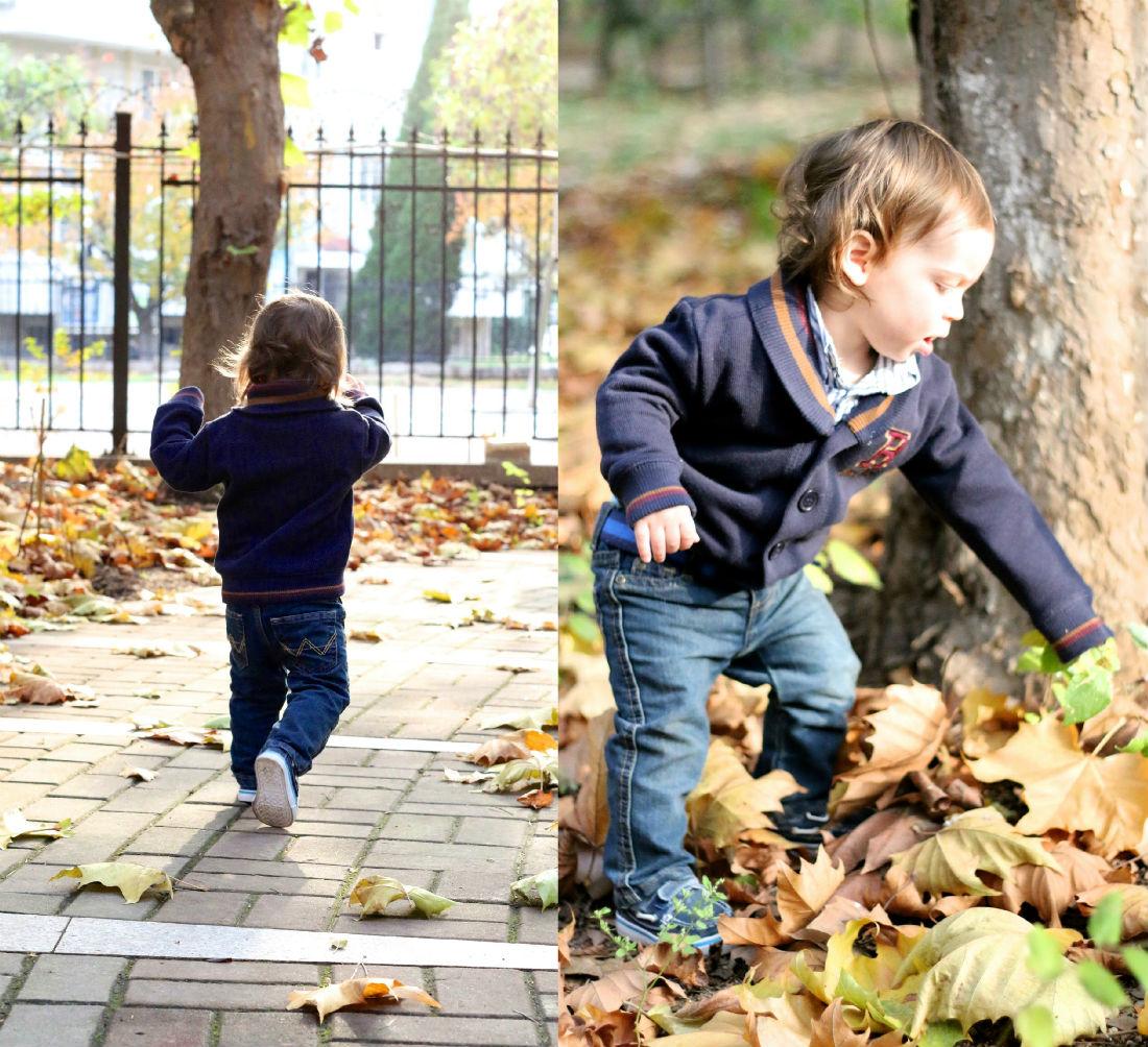 leaf-play