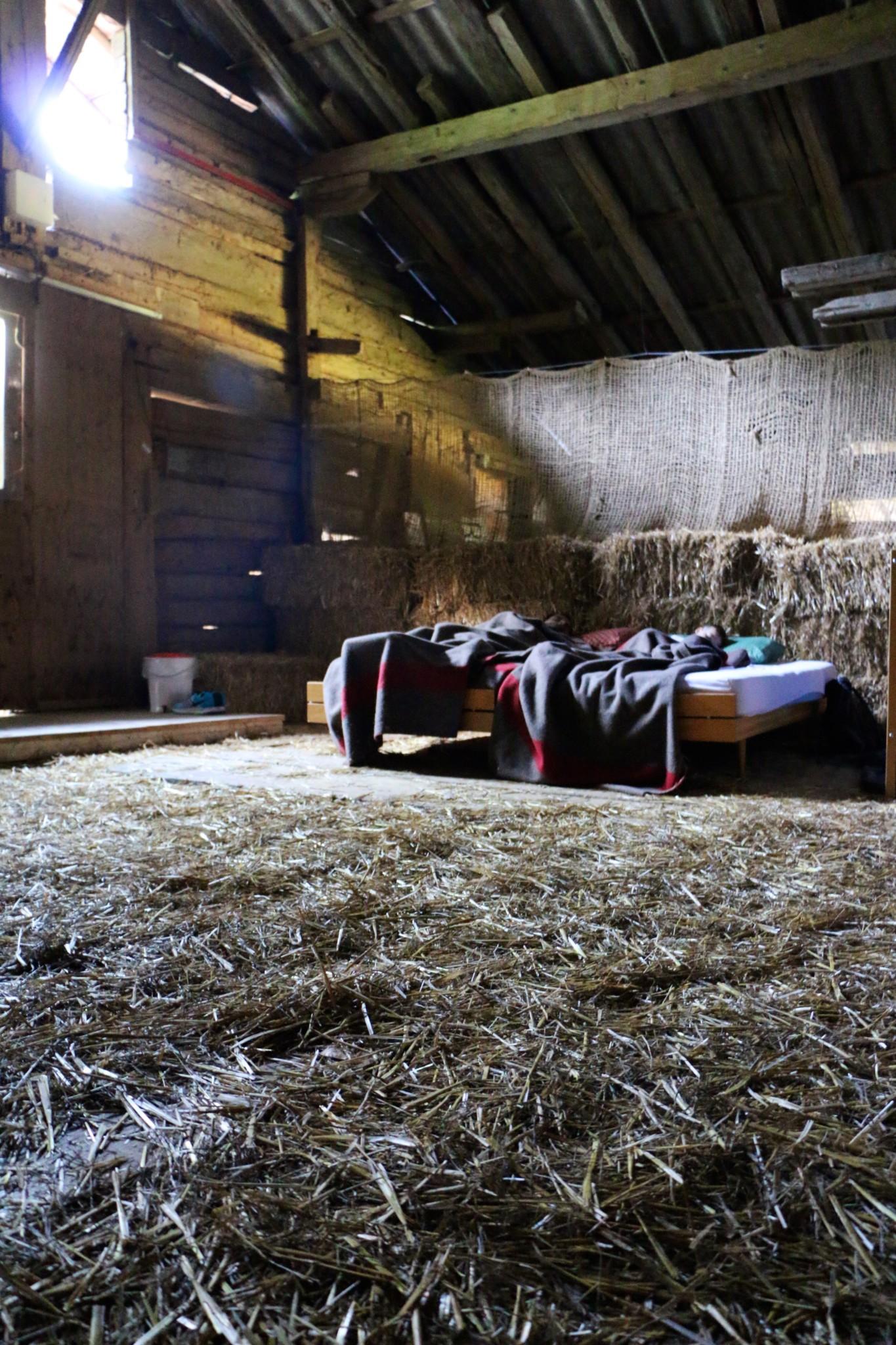 Slept in a Barn