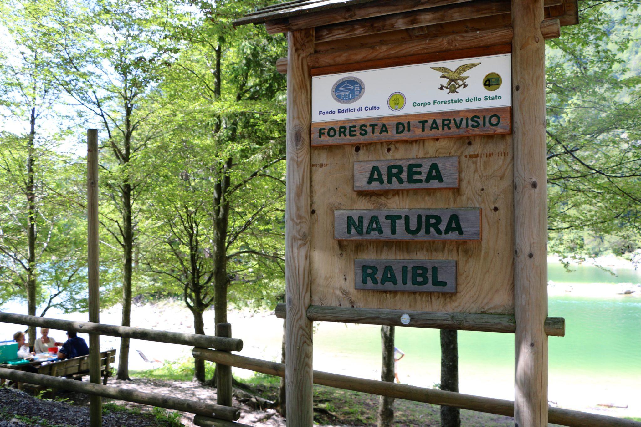 Foresta Di Tarvisio│Italy Stop-Over