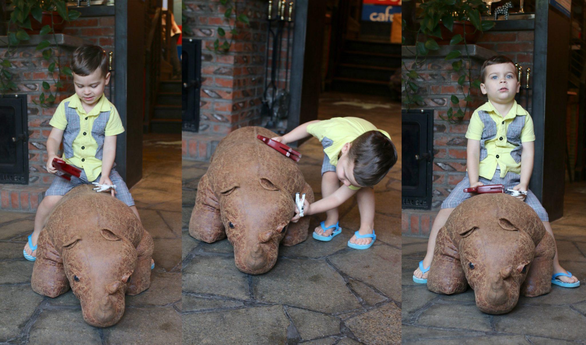 rhino eli