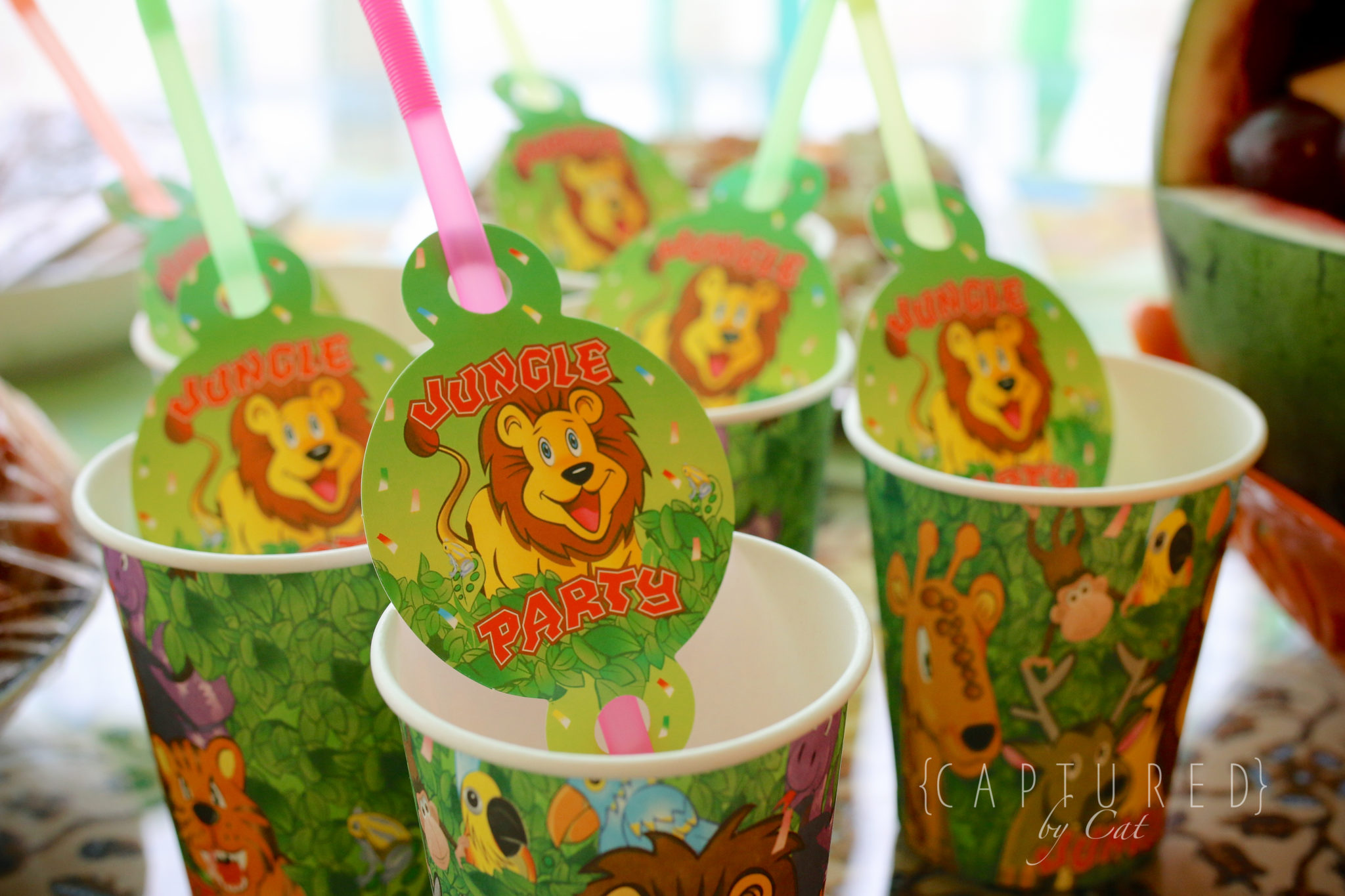 A Jungle Baby Shower