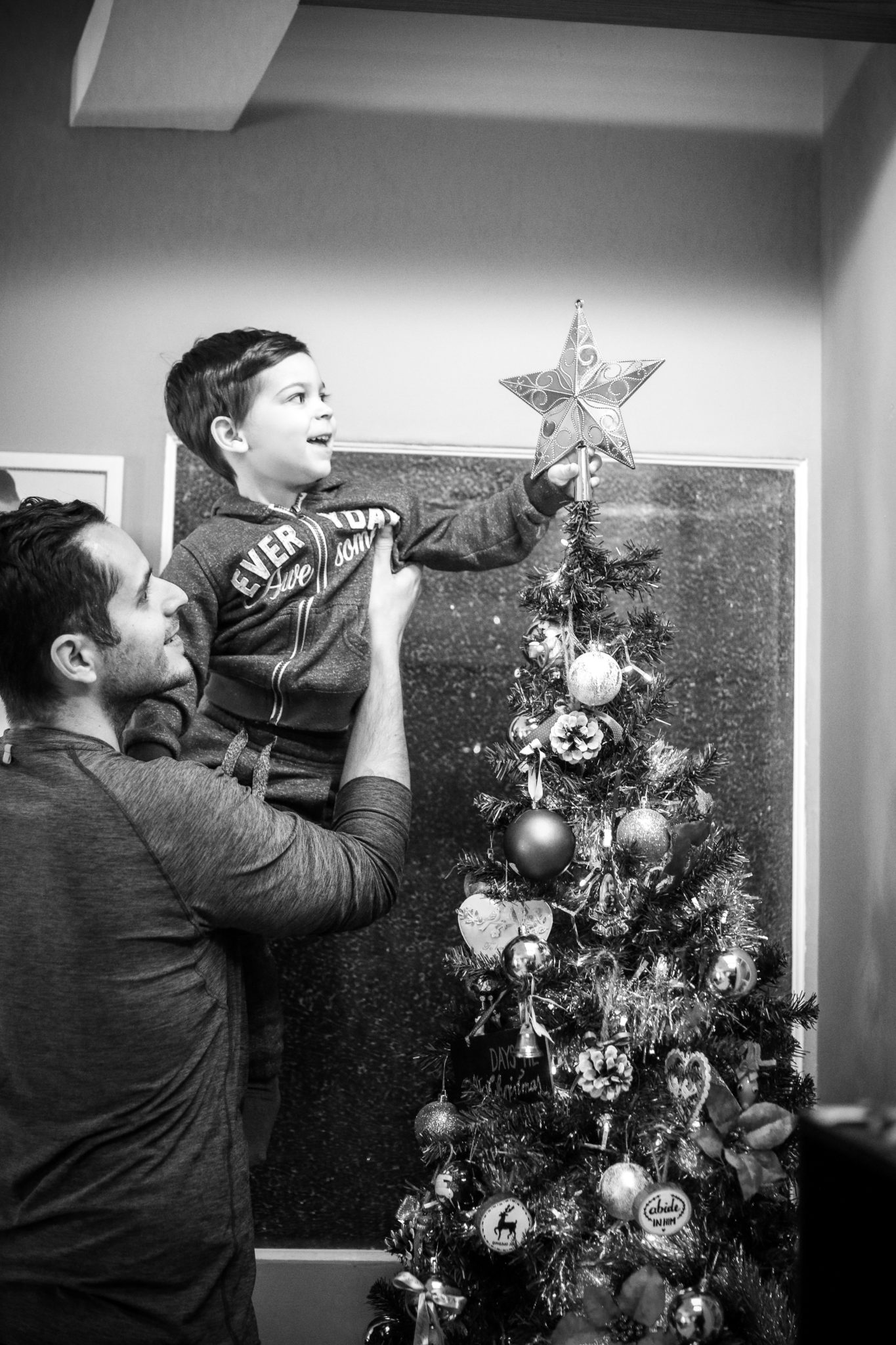 The Star is On the Tree
