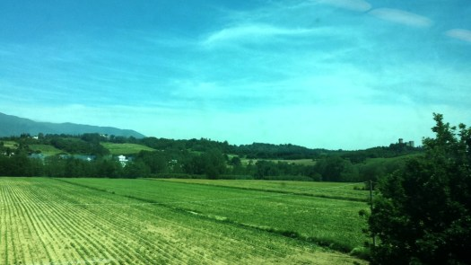 On the way to Cortona