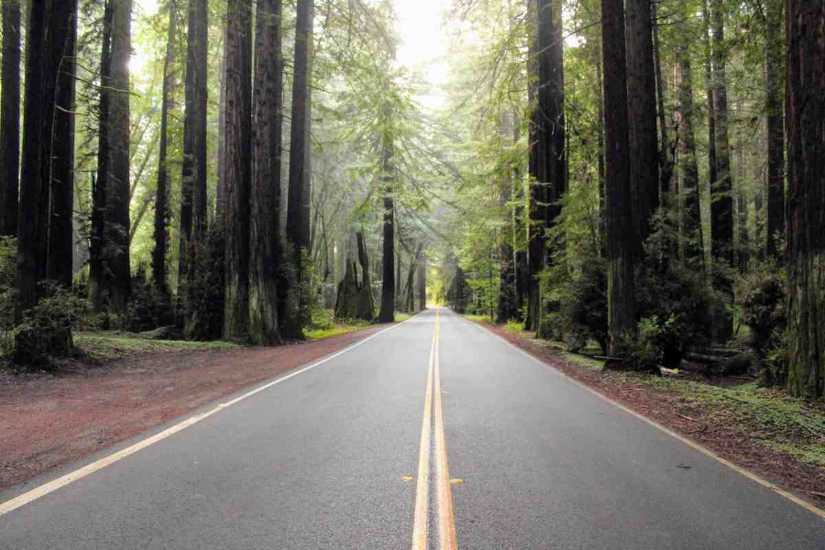 6 tips for a great road trip