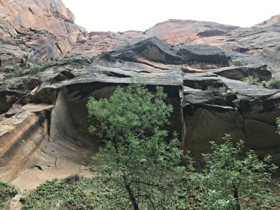 Zion National Park Riverside Walk Cliff face