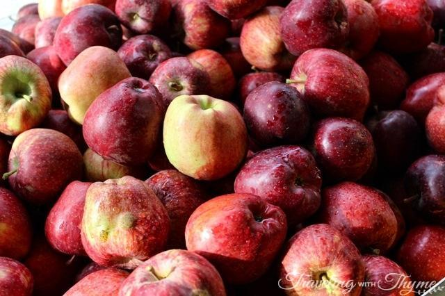 Lebanese Apples Red