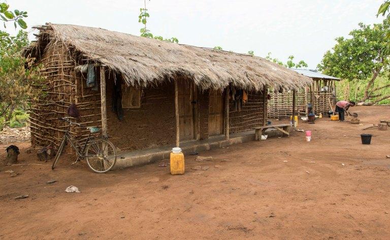 Ghana-Farms-0573