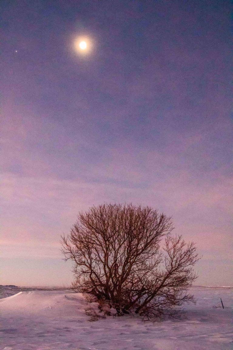 north-dakota-winter-2017-1031
