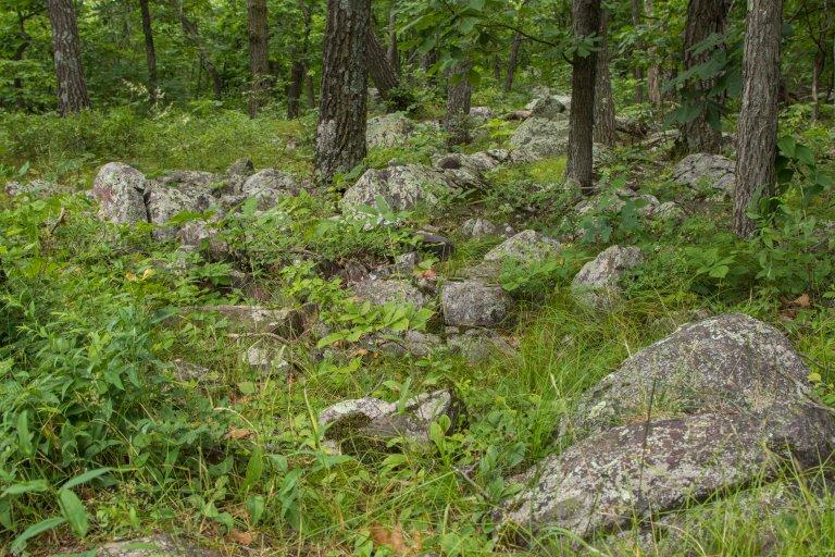 Devils Lake-3596