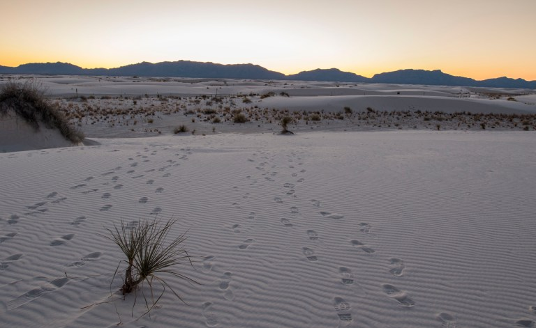 White Sands NM-2501