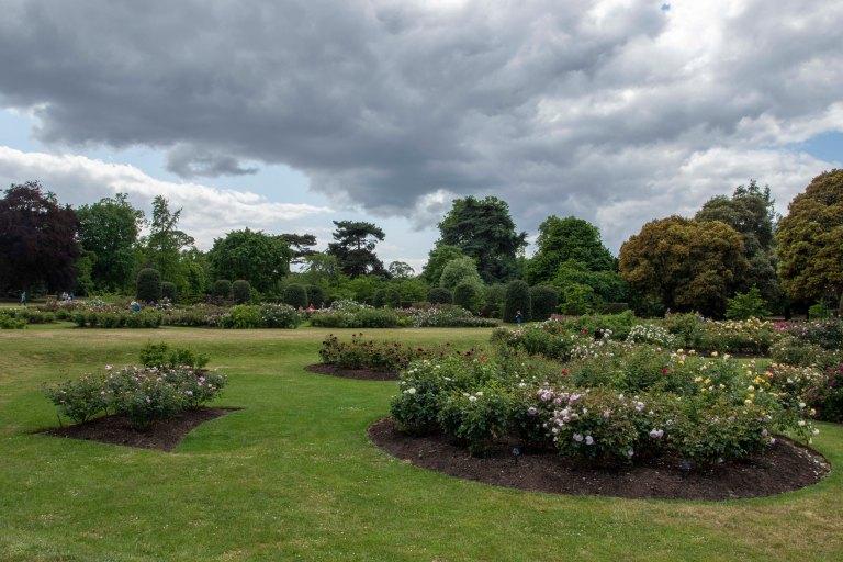 Kew Gardens-9562