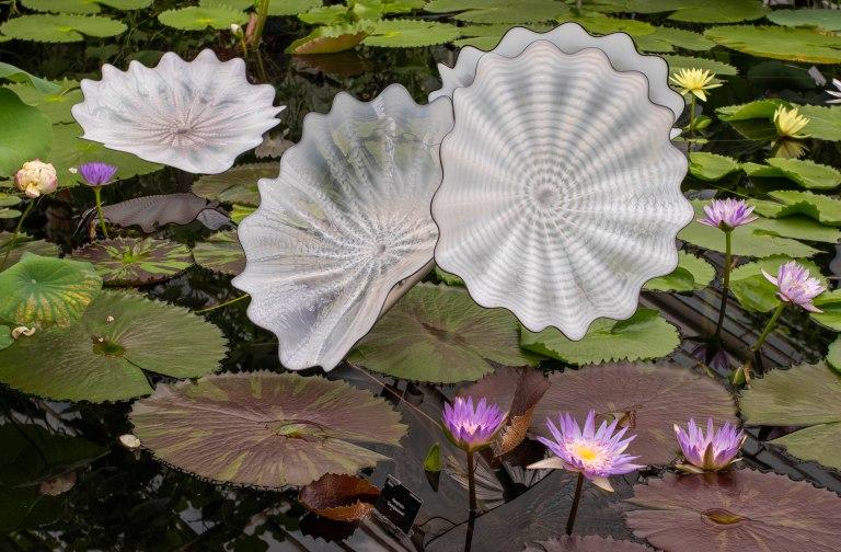 Kew Gardens-9687