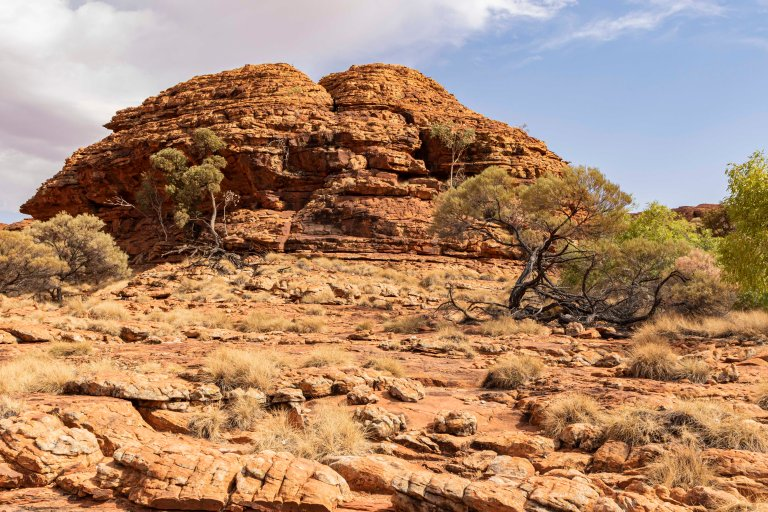Kings Canyon-6081