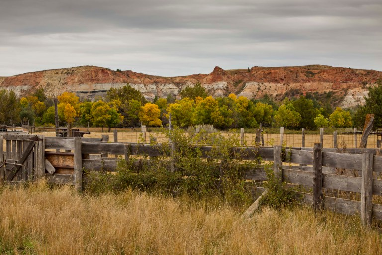 Badlands Corral-2