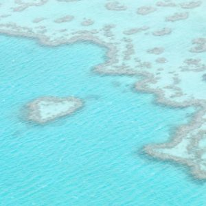 Great Barrier Reef + Whitsunday Islands