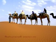 Traveling (Camel ride in Morocco)