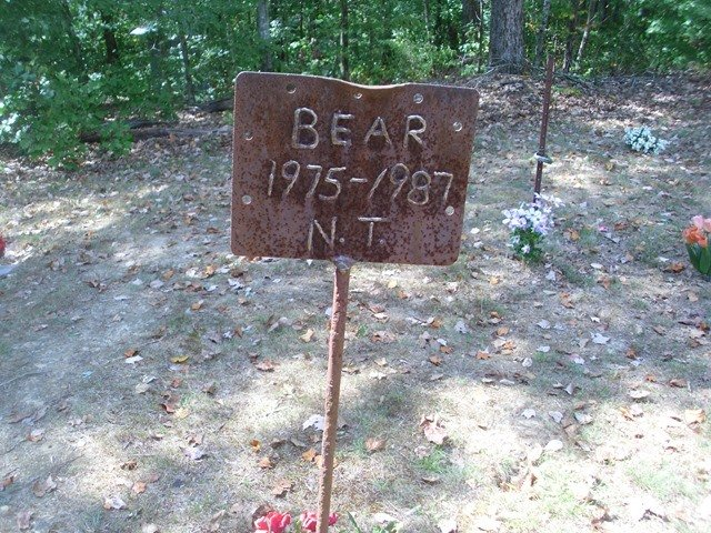 Let's hope lightning can strike twice! Things To Do In Alabama Coon Dog Cemetery