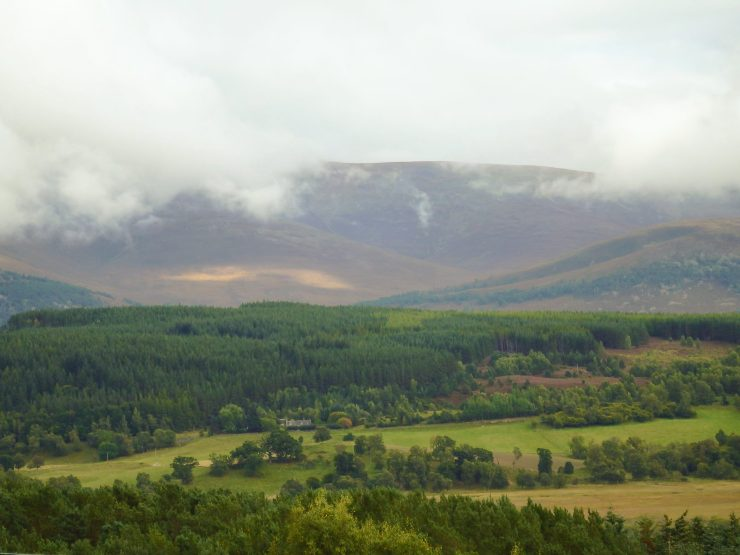 Lower half of Cairngorms