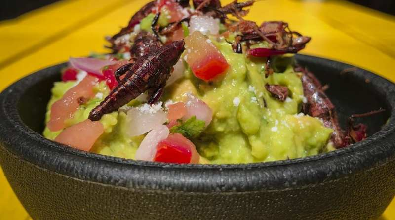 Guacamole with Chapulines at Santos Guisados Tacos & Beer