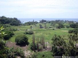 Ke'Anae is rugged but the residents have tilled soil here for generations.