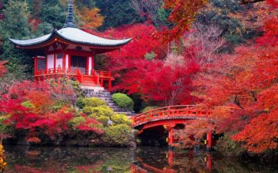 The Search for Daigo-ji Temple via @TravelLatte.net