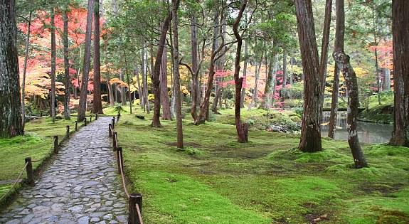 Photo: Saiho-ji Temple Garden