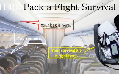 Pack an In-Flight Survival Kit