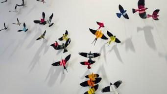 Record Player Birds by Paul Villinski via @TravelLatte