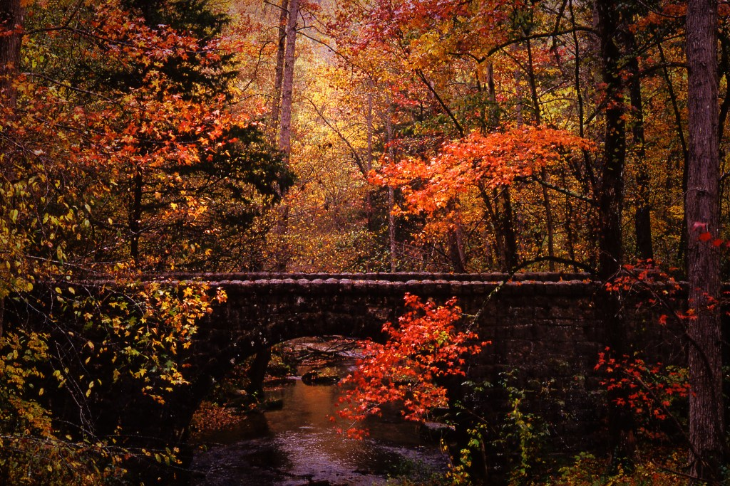 Autumn Color Across America - Blanchard Springs Bridge via @TravelLatte.net