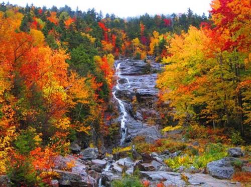 White Mountain National Forest, New Hampshire via @TravelLatte.net