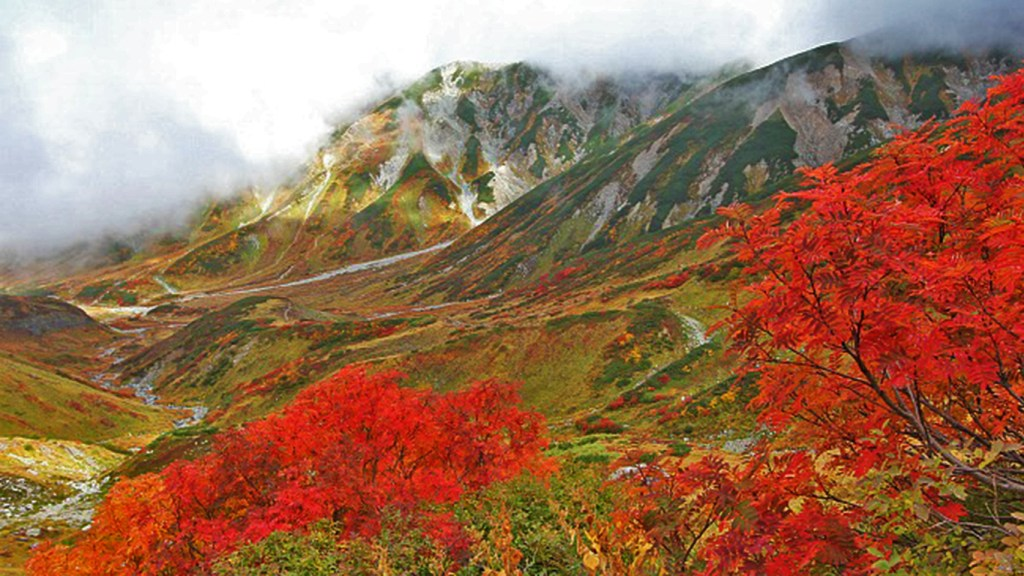 Tateyama Kurobe, Japan's Alpine Route, via @TravelLatte.net