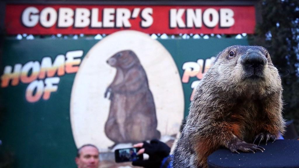Groundhog Day on The Weekly Postcard via @TravelLatte.net