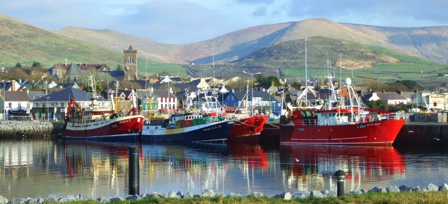 Dingle Harbour - Heart of the Dingle Peninsula, via Travellatte