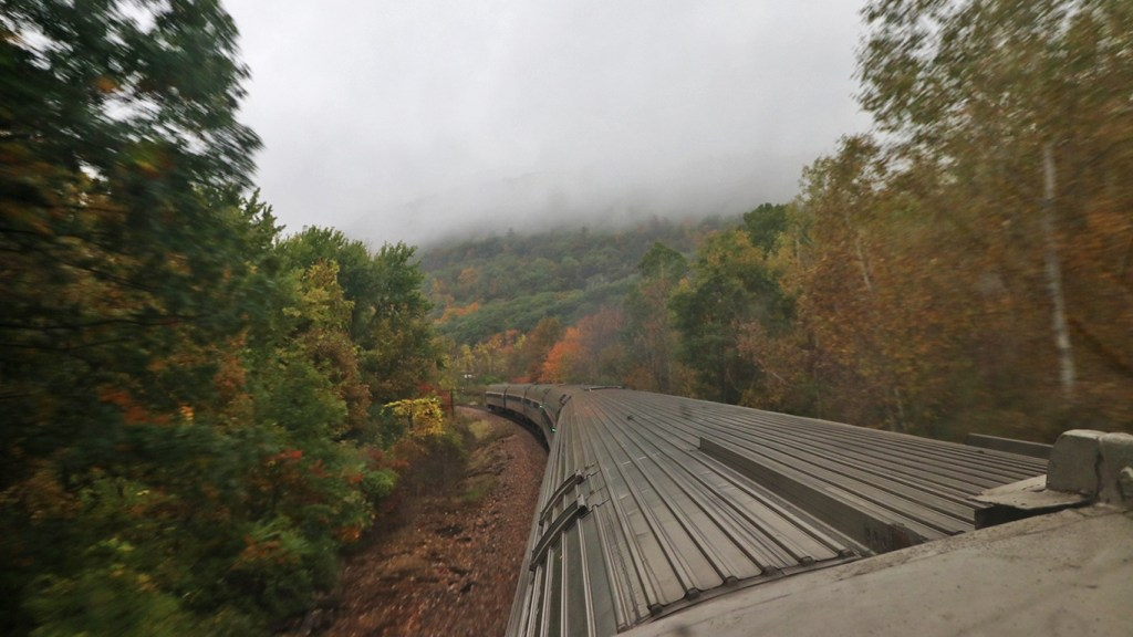 Amtrak Adirondack in the forest on a foggy day, by TravelLatte.