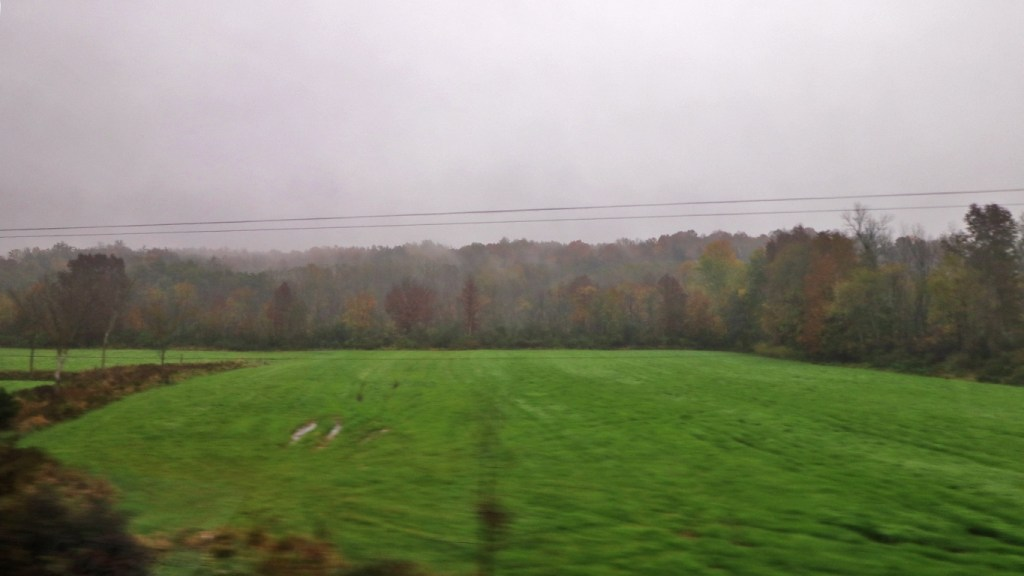 In addition to farms and fields, you can sometimes spot wildlife from the Amtrak Adirondack, by TravelLatte.