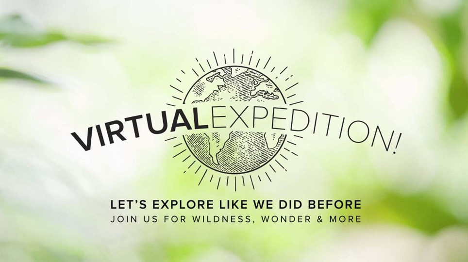 Linblad Virtual Expedition - Cruise Life - Armchair Traveler - TravelLatte