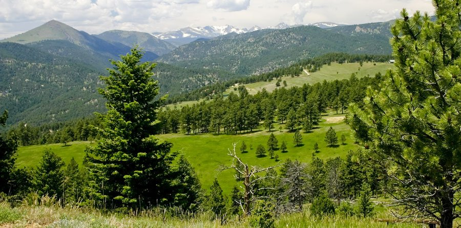 View of the Bald Mountain Scenic Area