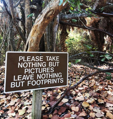 View of a signage in a wilderness