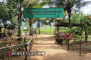 pintu masuk hutan mangrove cengkrong