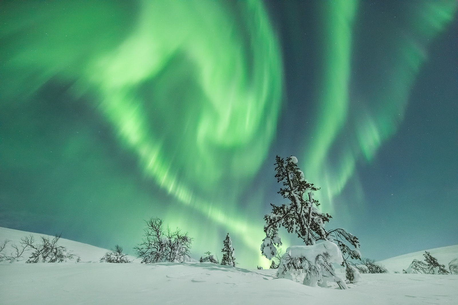5 reasons to visit Rovaniemi in February!