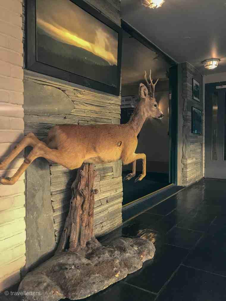 I lobbyen på Radisson Blu Mountain Resort Beitostølen