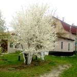 Отдых за городом – идеальный загородный дом