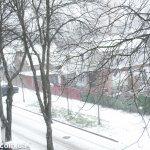 Первый снег 2012 и прогулка в парке Дубки (Киев)